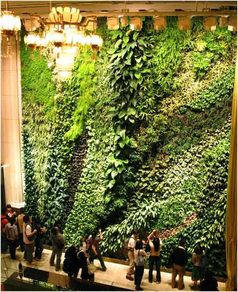 Jardines verticales la reserva for Como se hace un jardin vertical