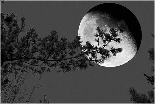 IMAGENES: visiones de la Tierra capturadas por el ojo humano Luni1