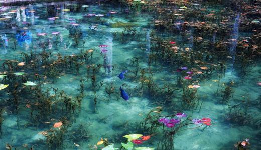 El fascinante pez cofre ostracion cubicus la reserva for Laghetto giapponese